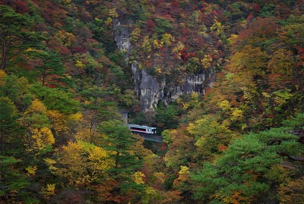 紅葉を走る鉄道(JR陸羽東線)