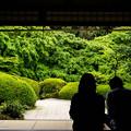 kyoto , shisendo