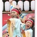 写真: 吉備人(きびうと)-KIBIUTO-_スーパーよさこい2008_01