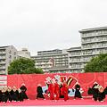 写真: 新琴似天舞龍神_荒川よさこい-17.jpg