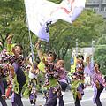 写真: 音鳴會_荒川よさこい-28
