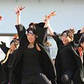 写真: 楓華~fuuka~ よさこい鳴子踊りチーム-03