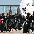 写真: 楓華~fuuka~ よさこい鳴子踊りチーム-01