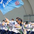 写真: TANASHIソーラン会_スーパーよさこい_02