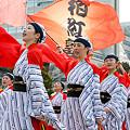 よさこい柏紅塾_東京大マラソン祭り2008_18