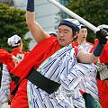 よさこい柏紅塾_東京大マラソン祭り2008_16