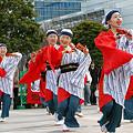 よさこい柏紅塾_東京大マラソン祭り2008_14