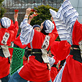 よさこい柏紅塾_東京大マラソン祭り2008_13