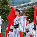 よさこい柏紅塾_東京大マラソン祭り2008_12