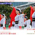 よさこい柏紅塾_東京大マラソン祭り2008_bf