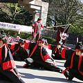 Team幻_東京大マラソン祭り2008_14