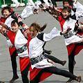 """写真: 早稲田大学 """"踊り侍""""_東京大マラソン祭り2008_26"""