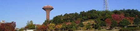 桃花台中央公園の給水塔と紅葉した木々
