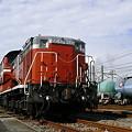貨物列車(鉄道)