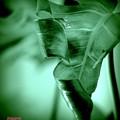 Pure green.......