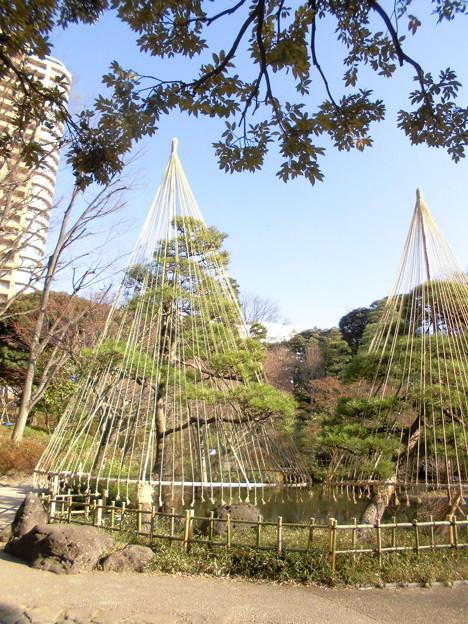 都電荒川線_早稲田駅界隈(早大側):甘泉園公園-06