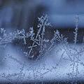 Photos: 窓の霜