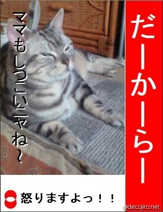 decojiro-20090501-012318