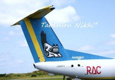RAC816便*しっぽ