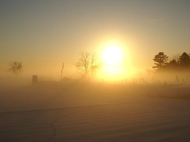 北の夕刻13-幻想の雪原1