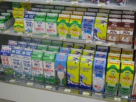 2009_01_03-01_07 okinawa-3