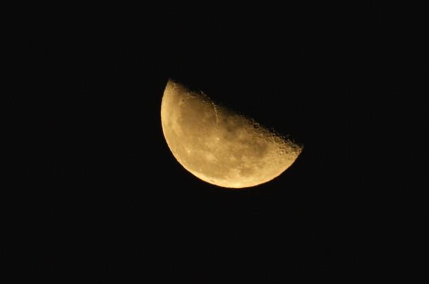 昇り始めた下弦の月
