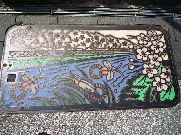 一の坂川とホタルのマンホール