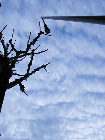 2009-02-15の空