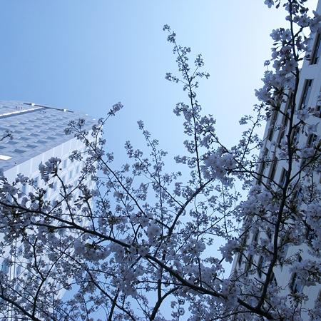 2009-04-07の空