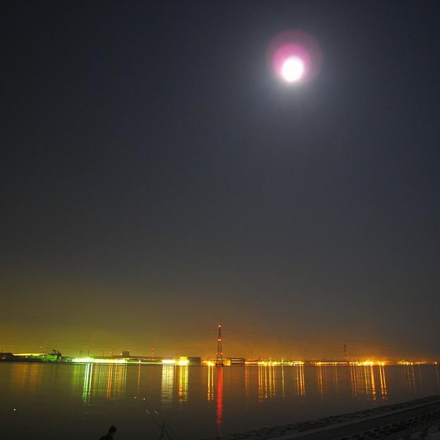 写真: 月光浴