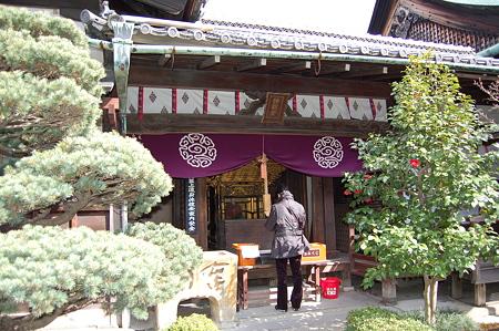 京都特別公開 136