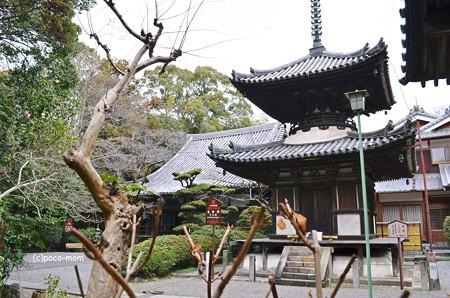 吉田寺2014年02月10日_DSC_0409