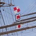 日本丸、他の写真8