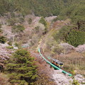 Photos: 水郡線 キハE130系単行列車
