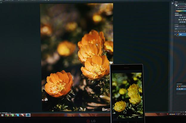 Xperia Z Ultra -ProPhoto-