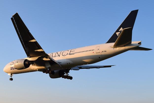 大阪空港で撮りました ANA 777-200