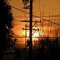 写真: 2009-03-21 昨日の夕日