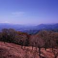Photos: 陣馬山より