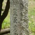 Photos: 03.足をのばし安土城跡へ行き