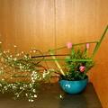 Photos: もうすぐ春ですね~
