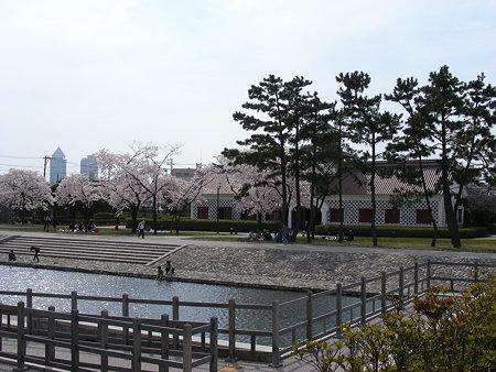 旧新潟税関と桜