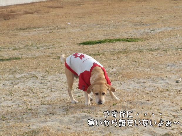 s-myu2008_1224(003)
