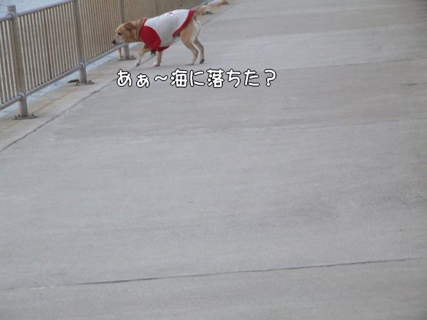 s-myu2008_1224(049)