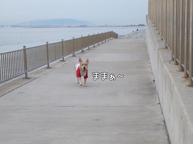 s-myu2008_1224(067)