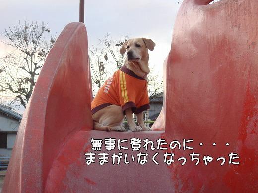 s-myu2008_1227(025)