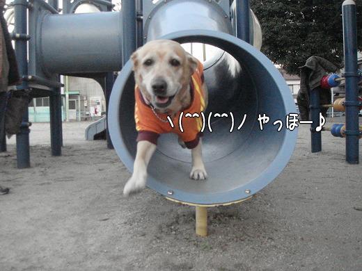 s-myu2008_1227(036)