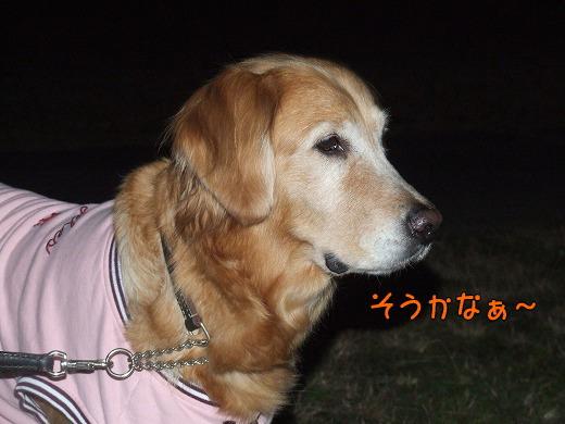 s-myu2008_1228(077)