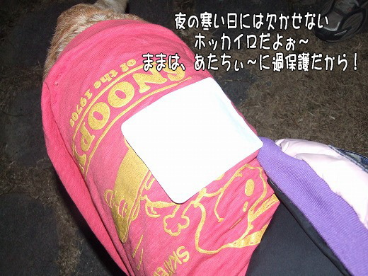 s-myu2008_1230