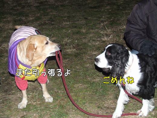 s-myu2008_1230(011)