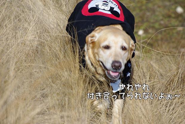 s-myu2009_0221(142)